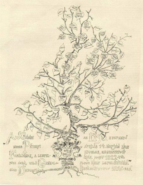 Rajzolt családfa
